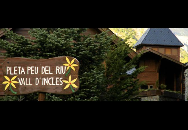 Appartement à Incles - Pleta Peu del Riu 2.6, Incles
