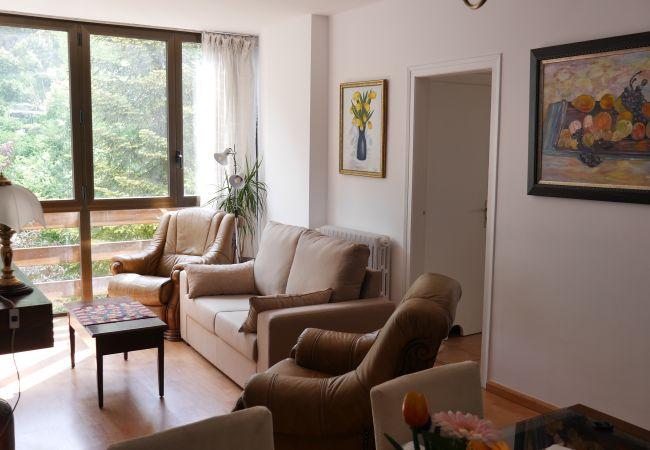 Apartament en La Massana ciudad - Vitivola La Solana 4-2