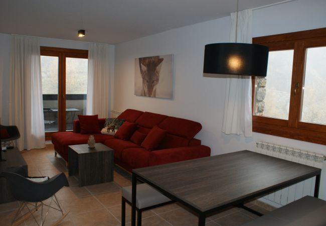 Apartament en Ransol - Segle XX 4-1